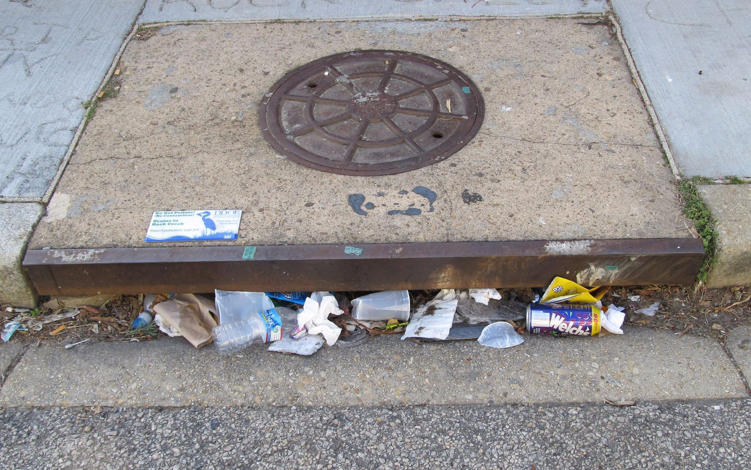 Clogged Storm Drain